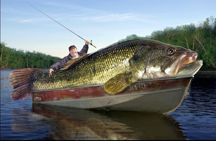 пользу рыбалки доказала наука